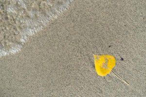 Am Strand joggen - im Sand laufen