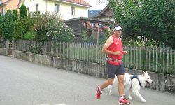 Lauftraining mit dem Hund