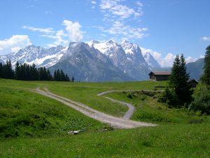 Natur beim Traillaufen respektieren