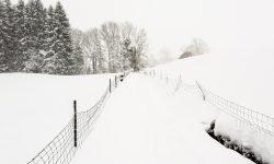 Snow Running - Lauftraining auf Schnee