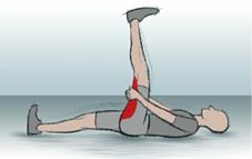 07 Vordere Oberschenkelmuskulatur