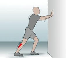09 Zwillingswadenmuskel Schollenmuskel