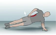17_Gesaess_und_hintere_Oberschenkelmuskulatur