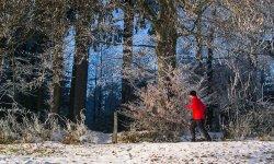 Fit durch den Winter kommen mit Lauftraining