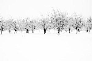 Lauftraining im Winter 2